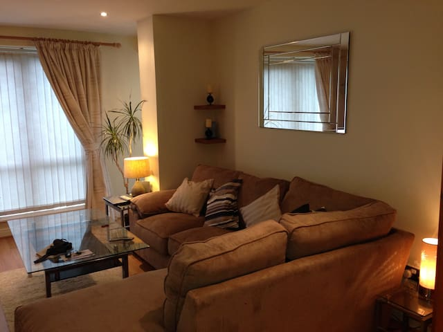 2 bed first floor apartment - Dublin 18 - Flat