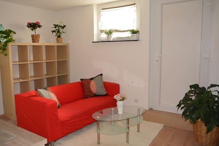 New 1,5-room-Apartment 30qm, Stuttgart (Vineyards) - Stuttgart - Huoneisto