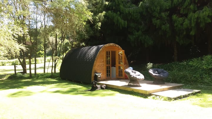 Quirky Woods at Maketu - The Morepork Forest Cabin