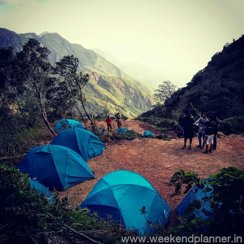 Jungle Camp at Munnar - Kannan Devan Hills - Tent
