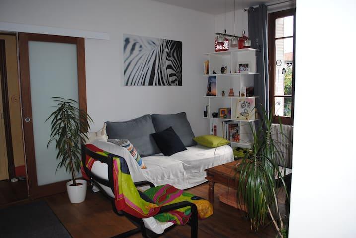 Maison familiale avec jardin en centre-ville