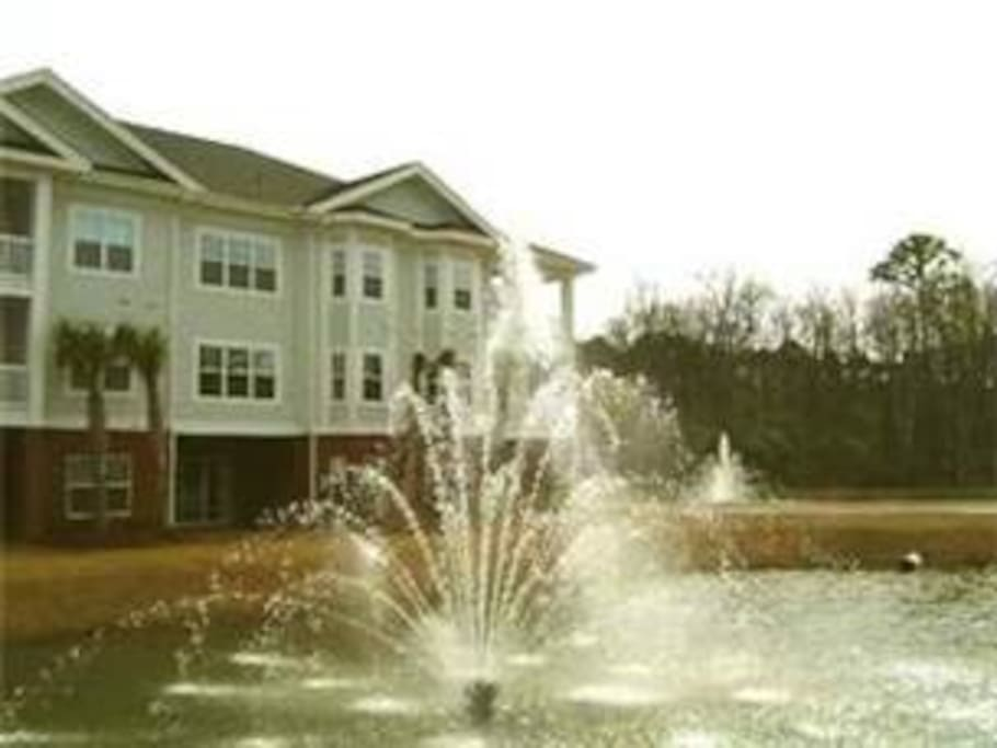 murrells inlet big and beautiful singles Best roofing repair companies in murrells inlet, sc  up by ken were beautiful  in the exterior remodeling of both single family and multi-family residences.