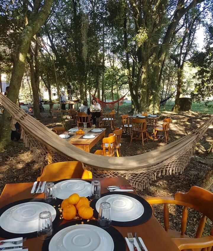 Almoço embaixo das árvores