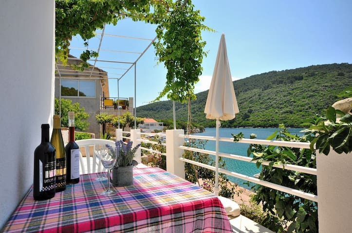 Studio Apartment, 150m from city center, beachfront in Pasadur - island Lastovo, Terrace