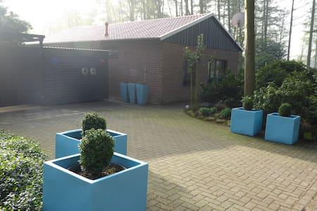 Ferienhaus mit Carpot und Garten - Uelsen - 独立屋