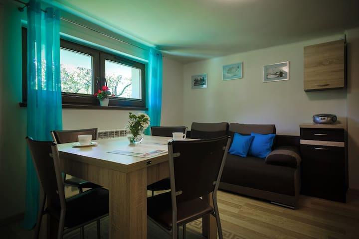 Villa Aviator Apartament Marco J5 -Jaworze-Beskidy