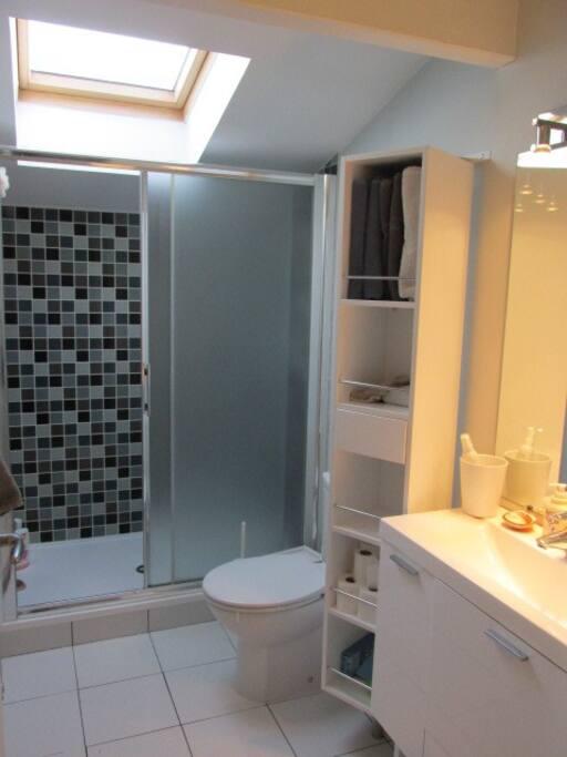 La salle de douche privée