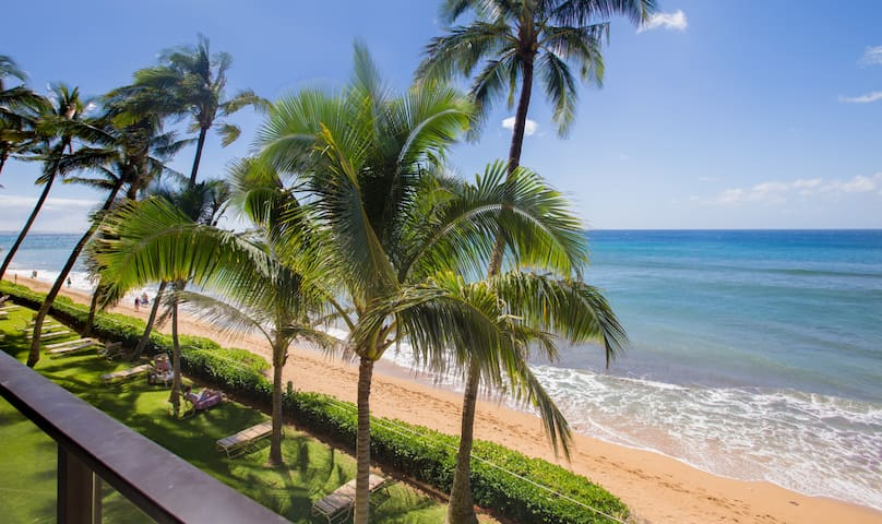 Summer Special Only $295 a Night!  Ocean Front--Floor to Ceiling Ocean Views! - Lahaina - Condo