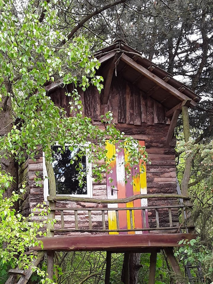 ein süßes Baumhaus für Naturliebhaber und Minimalisten