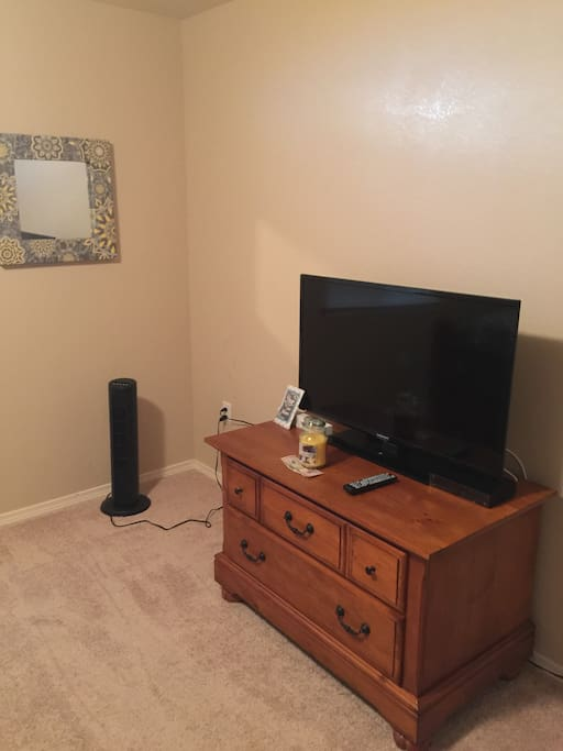 Television with cable