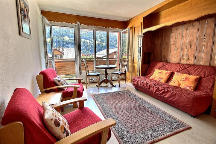 Nice studio in the center of the village, with a beautiful view on the Dents du Midi (2)