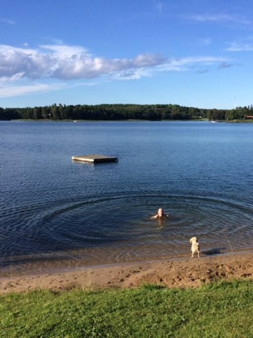 Nära till badplats och brygga där roddbåten ligger.