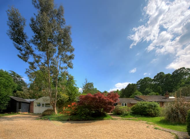 Amazing New Forest location - Sleeps up to 44!