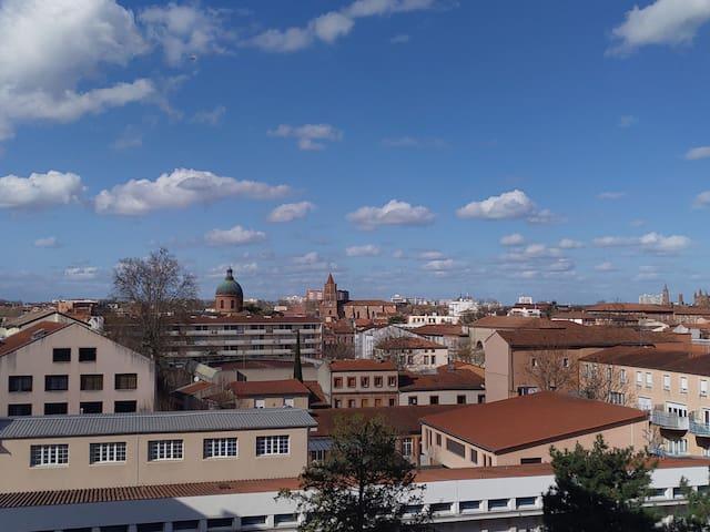 Toulouse T2  Saint Cyprien Jardin & Garonne