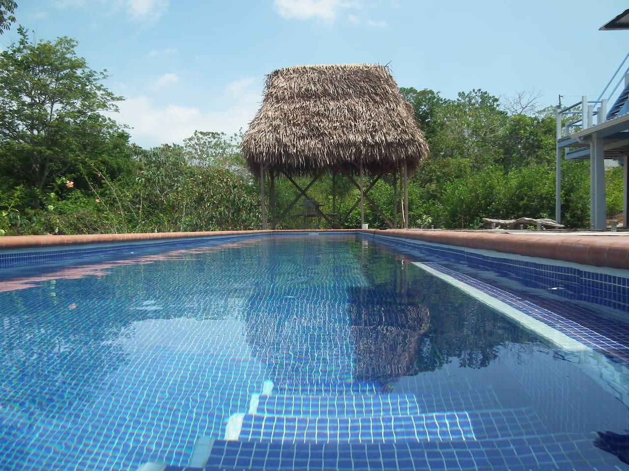 50 ft lap pool