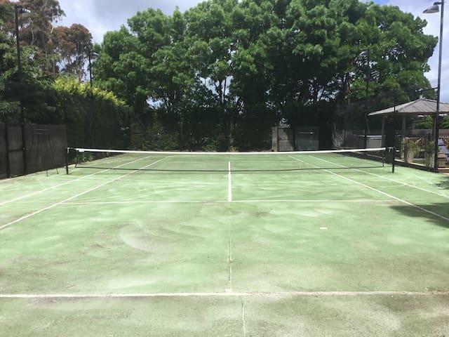 Mod grass tennis court with lights.
