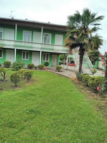 palmovi dom