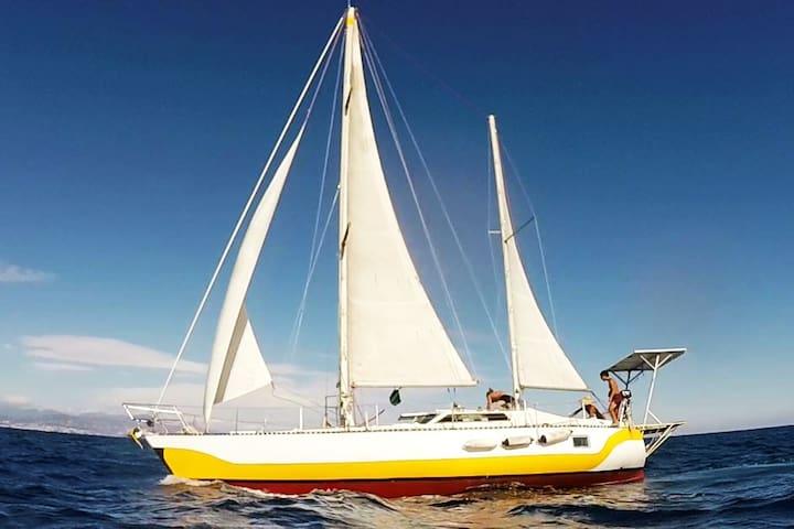 Wonderful sailing boat in Palma de Mallorca's bay
