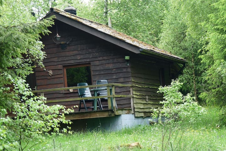 Wooden chalet in the middle of forests.