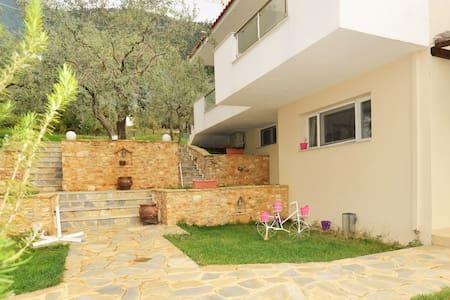 Ilias Apartments 4 - Golden Beach - Chrisi Ammoudia - Apartment