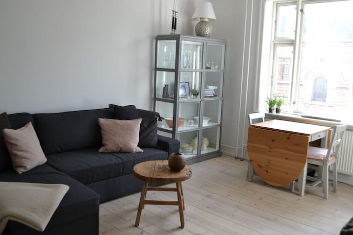 "Nordic apartment next to ""Frederiksberg garden"""