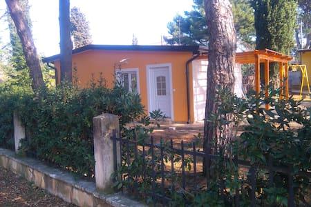 ADRIATIC HOUSES BORSE-CIPRES - Bašanija