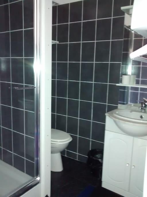 Salle d'eau avec toilette.