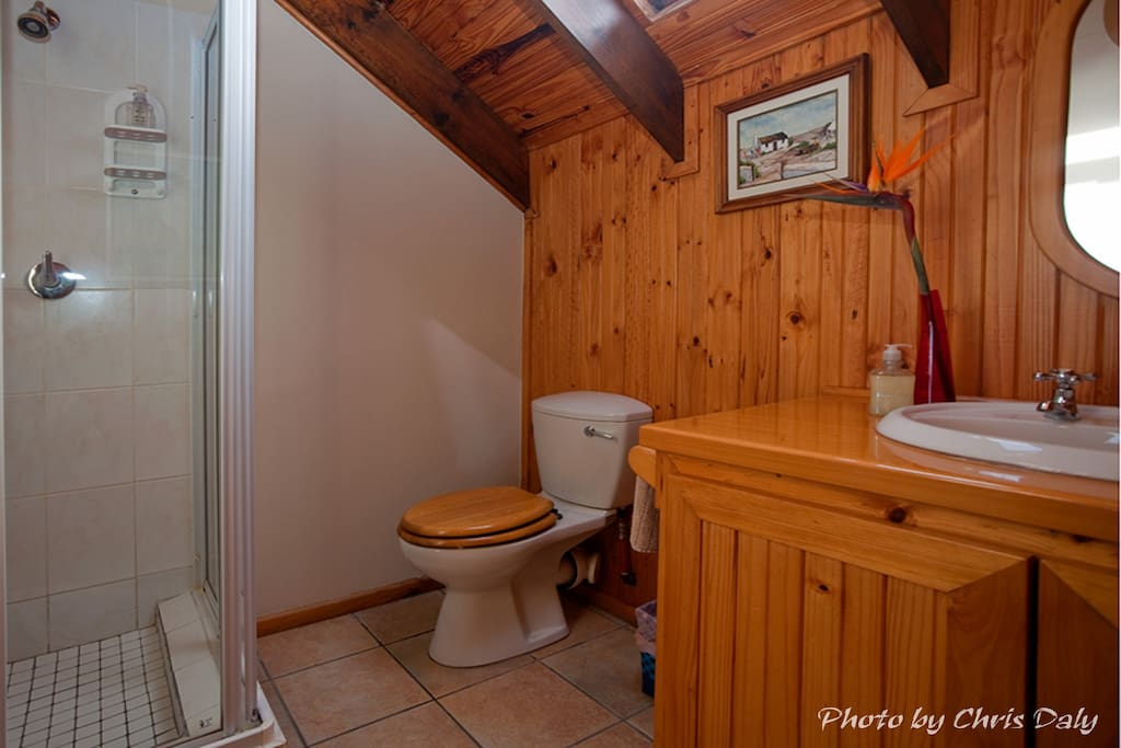 Shower, toilet and vanity basin