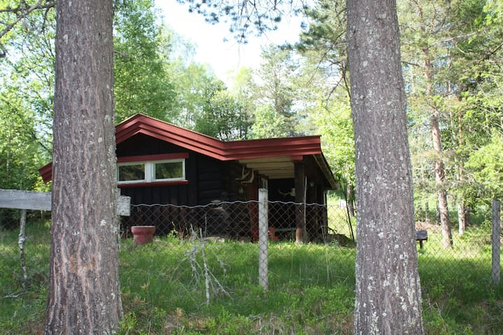 """Gamelstu"" Timber Cottage - Elverum - Cabin"