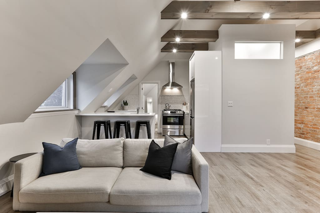 Contemporary Minimalist Skyloft In Queen West Apartments For Rent In