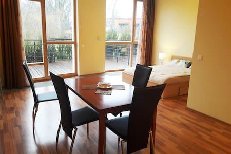 Cosy studio apartment, 5min beach, free parking - Saulkrasti - อพาร์ทเมนท์