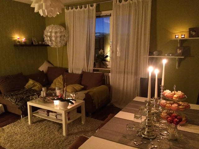 Zentrale gemütliche 2-Zimmer Wohnung in WOB - Wolfsburg - Apartment