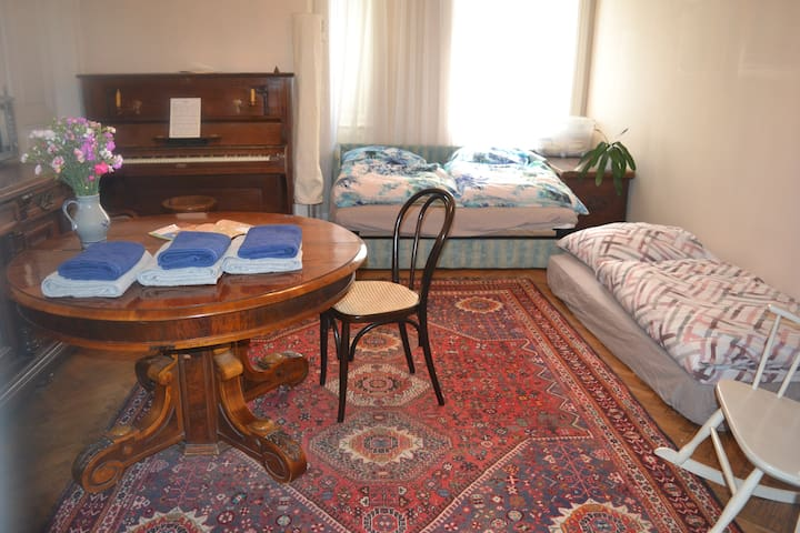 ROOM IN CENTRAL VIENNA, close to tram & subway