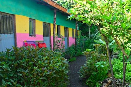 Lasta Café and Garden Retreat (Reiki Massage)!