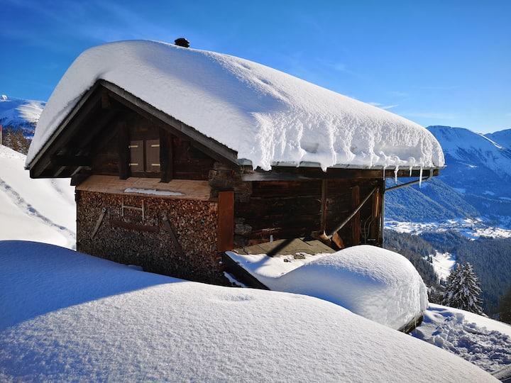 Gemütliche Alphütte Ski-in / Ski-out