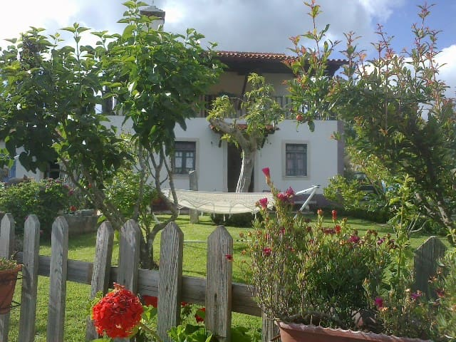 Rustic country house w/barbecue (40min Coimbra)