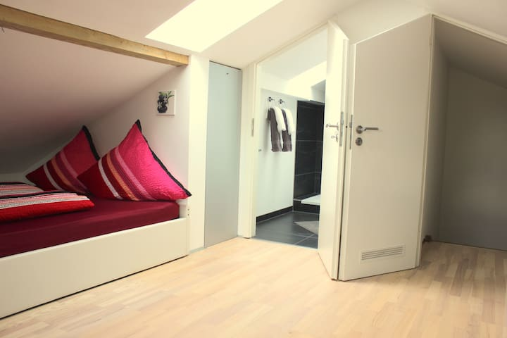 awesome attic appartement near Arena,MOC,Zenith - Munique - Apartamento