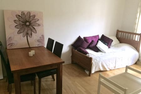 Lovely 1-room apartment for rent this summer!