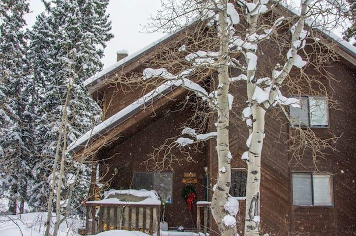 Storm Mountain Escape - Salt Lake City - House