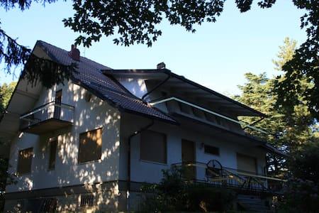 Appennino Reggiano-Villa del Castagno - Marola