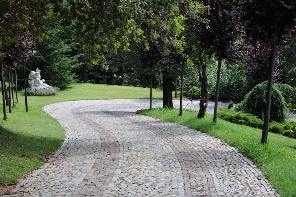 Strada accesso alla villa