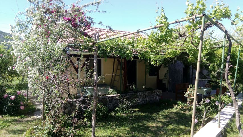 Charming holiday home near Skadar lake