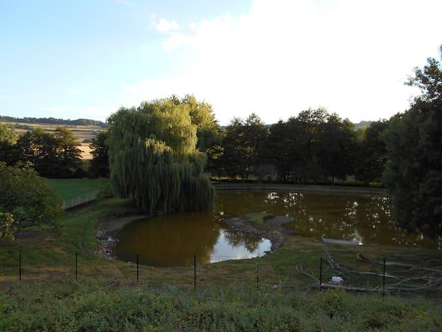 Vue sur le parc et son étang