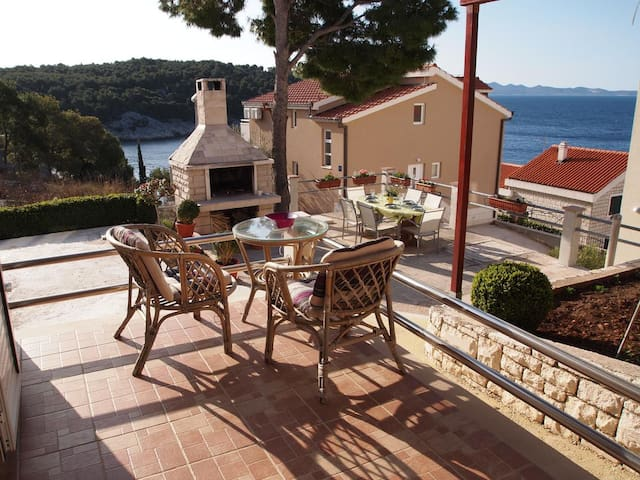 One bedroom apartment with terrace and sea view Cove Osibova (Brač) (A-12062-a)