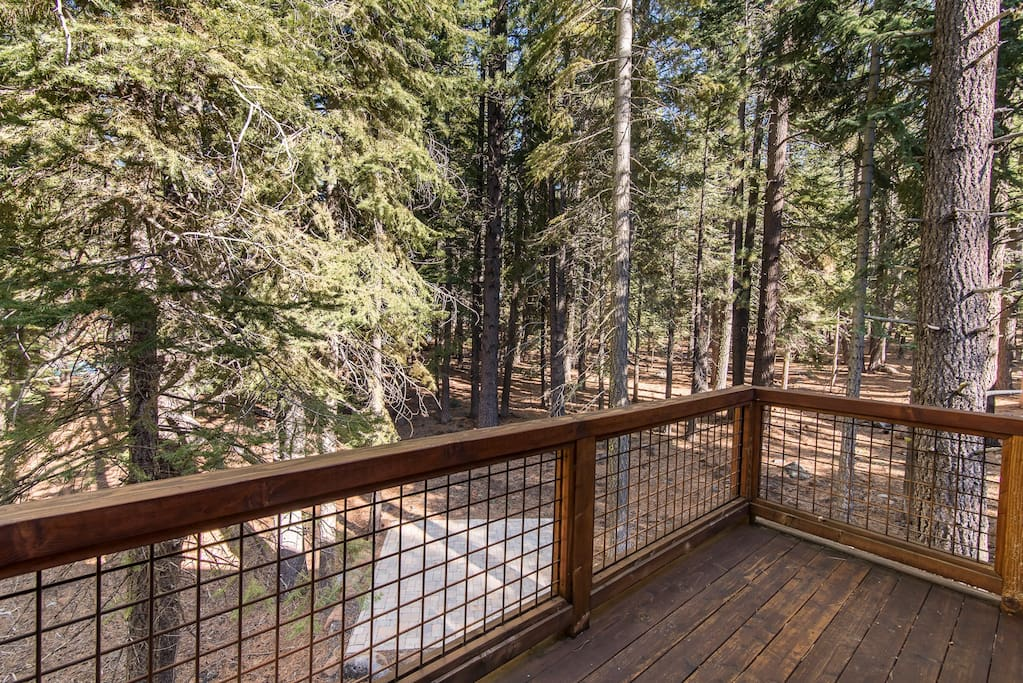A peaceful backyard in the pines, as viewed from your private deck