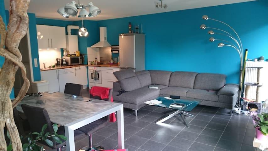 CHAMBRE DANS BEAU F3 ,70 m2 (IDEAL POUR ETUDIANT) - Vandœuvre-lès-Nancy - Apartemen