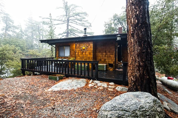 Updated, secluded cabin with wrap-around deck & forest views, 1 dog welcome!