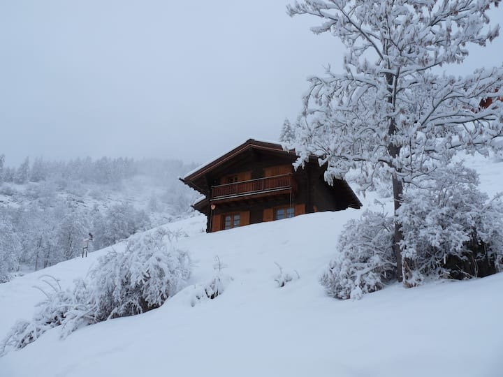 Cosy chalet in a snow-sure ski area.