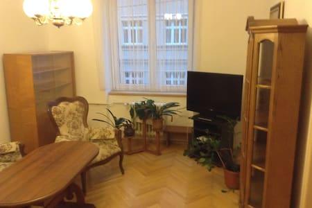 Prostorný byt k pronájmu - Karlovy Vary