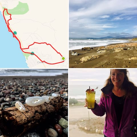 One of the many amazing hikes a guest can experience in Cambria, CA. This hikes starts at the Bridge Street Inn. The loops takes a guest through the cemetery to the beach then up to the forest at Washburn State Park. Followed with a beverage break at Centrally Grown and back through town.